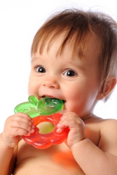 Objects Infants Can Chew on Safely While Teething